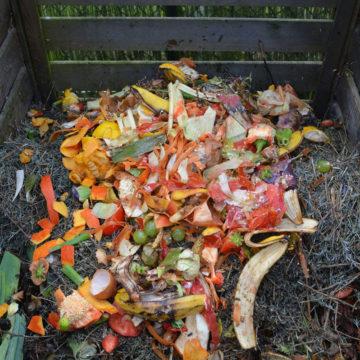 Wyprodukuj sobie kompost!