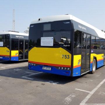 Hybrydowe autobusy na ulicach Płocka